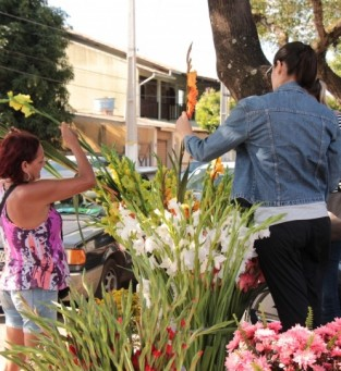 Além do comércio formal de flores, cidade também recebe os ambulantes do período