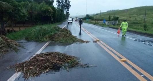 Chuva causou transtornos em transito da BR 101