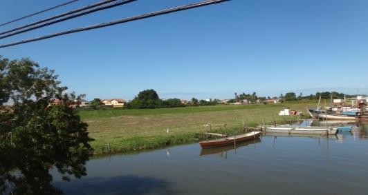 Manguezal do rio Paraíba do Sul