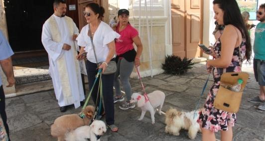 Tradicional bênção aos animas na Igreja São Francisco