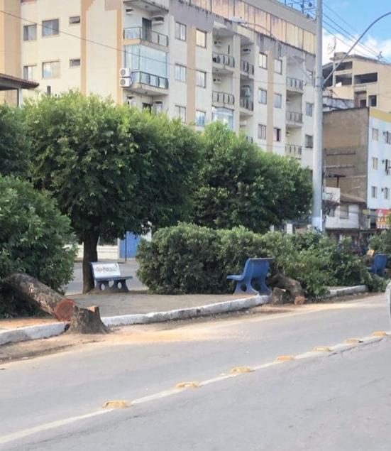 Local de onde foram retiradas as árvores