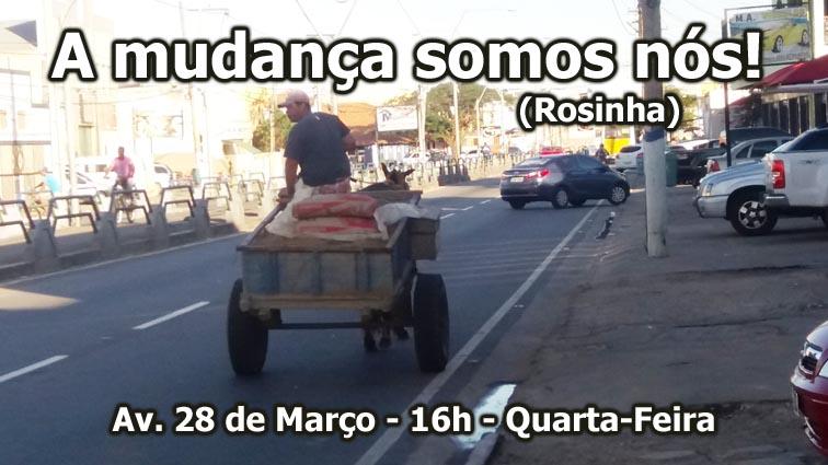 burro-3