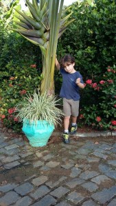 Daniel, o Dani, filho de Claudia e Luis Adriano.  Um dos símbolos desta data.