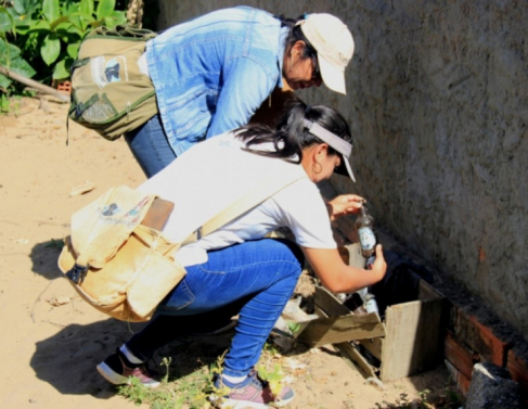 Agentes de endemias visitam casas e quintais em busca de possíveis focos do vetor